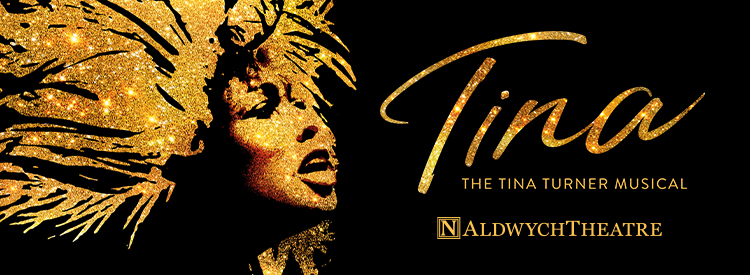 TINA - The Tina Turner Musical Tickets | Group Line
